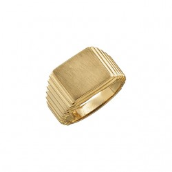 14K Yellow 14x13mm Square Signet Ring