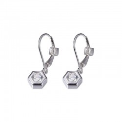 E01003 Cadre Earrings