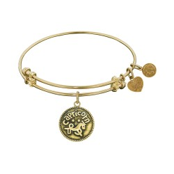 Angelica Capricorn Bangle