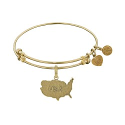 Brass with Yellow Usa Map Charm Angelica Bangle