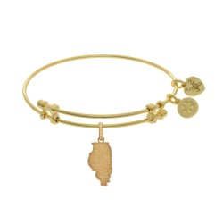 Brass with Yellow Finish Illinois Charm for Angelica Bangle