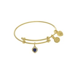 Brass with Yellow Finish Charm September Heart Sha Pe Cz Birthstone