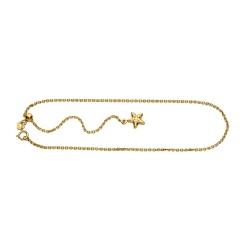 14K 1 Yellow Gold Adjustable Cable Chain Anklet With Spring Ring Claspstarfish Charm