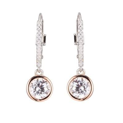 Lady's Two Tone Sterling Silver Leverback Earrings